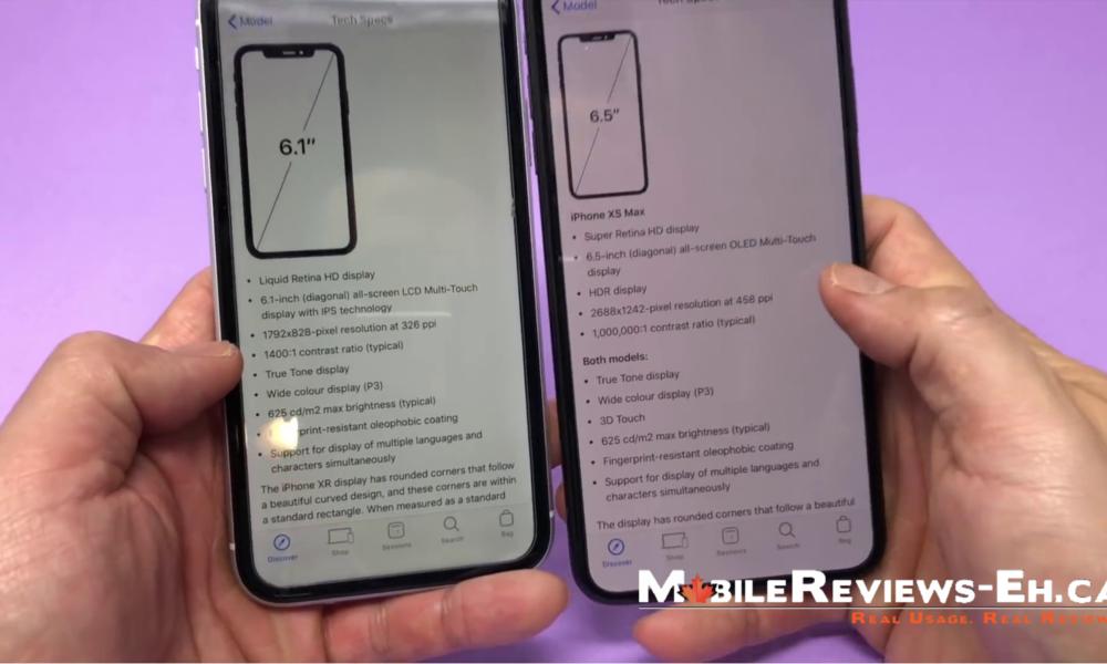 iphone xr vs xs max