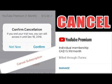 Cancel Or Pause Your Youtube Tv Membership