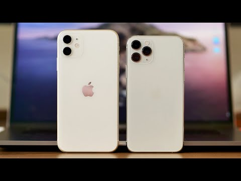 iPhone 11 evaluate: The only iPhone price buying